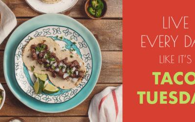 Tours & Taco Tuesday